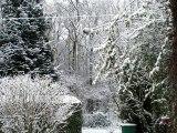 Neiges d'hiver en automne à Beauvais, en Picardie.