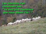 Les Joyeux Randonneurs du Couserans, rando Cap Broc