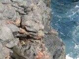 Galapagos Islands travel: Kathy's slideshow of Santiago