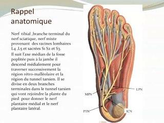 Neuropathie du nerf calcanéen ou syndrome de Baxter