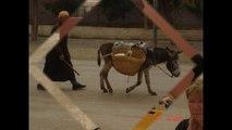 Mon film   mon voyage  au maroc