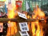 South Korean Farmers Protest Against Free Trade Agreement