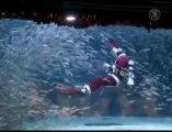 South Korean Aquarium Celebrates Christmas with Fish Perform