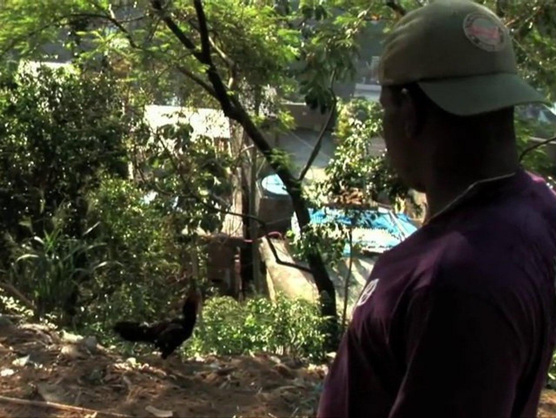 Mc Galo_Trecho do filme Favela on Blast _a voz do morro!