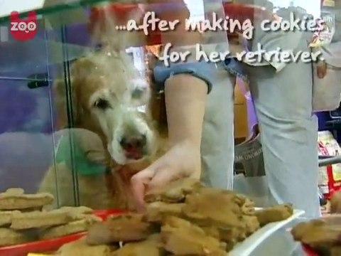 Doggy Bakery