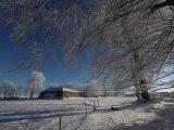 Journée Hivernal: soleil, neige, givre et ruisseau