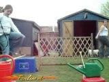 0062 - Une petite fille chute dans son jardin