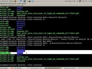 Tutoriel vidéo : Quelques commandes Unix indispensables