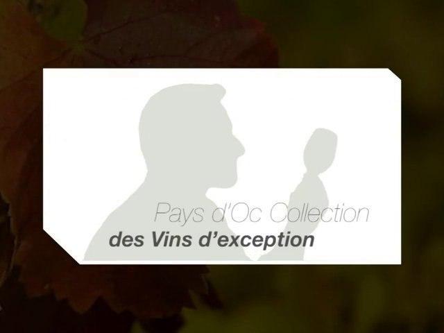 Pays d'Oc Collection - des vins d'exception (2010)