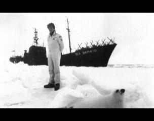 Du sang sur la glace - Sea Shepherd