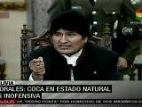 Evo Morales: la coca en su estado natural es inofensiva