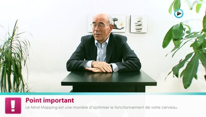 Le Mind Mapping - Xavier Delengaigne & Pierre Mongin