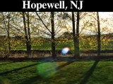 Tree Removal-Trimming Service | Hopewell, NJ