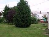 Homes for Sale - 516 Grand St - Trenton, NJ 08611 - Brian McGraw