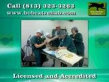 Bobcat Rescue in Tampa FL - Bobcat Rehab Rescue