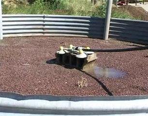 traitement des effluents d'élevage caprin, EPL d'Aubenas