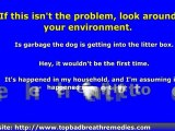Bad Breath in Dogs - Causes, Prevention Tips, and Treatment