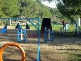 nles photos 033