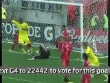 Major League Soccer Goal of the Week Nominee: William Hesmer