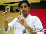Karate Kyokushinkai | Histoire, stratégie et technique