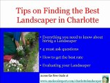 Charlotte Landscaper, Charlotte Lawn Care, Charlotte Grass