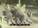 Archivio Storico Istituto Luce - video