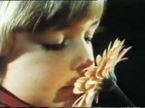 Los sentidos: Receptores sensoriales