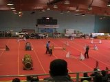 Agility Annonay 2011 jumping