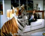 The transformers 1 (2007) (Michael Bay promo)