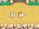 WT Hamtaro Heartbreak/3-La plage aux hamster