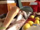 Karabiga Balıkları (STV Haber Haberiniz Olsun Programı) - Dailymotion video