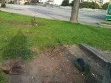 Aversa - Il Parco Pozzi e quel che resta dei giochi per bambini