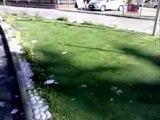 Aversa - Il miracolo dell'erba