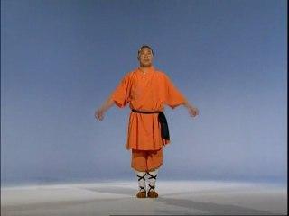 Dailymotion - Cours de kung fu en ligne - Les pratiques de l'art martial - une vidéo Sports & Extreme