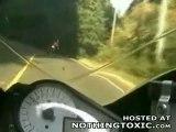 biker hits deer at speed.