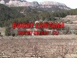 Buggy Lantana Route M800I (3)