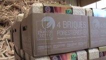 Recyclage : le bois énergie d'Agriopale