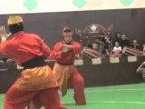Pencak Silat Indonesia Martial Arts 15