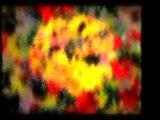İmam-ı Gazali (r.a)-Amelsiz İlim