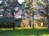 CB1464 Immobilier vente achat Saint Sulpice, ferme rénovée 180 m² de SH, 3 chambres,  1h4 de terrain