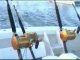 Mauritius Ile aux Cerfs Deep Sea Fishing