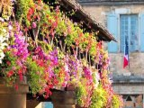 French Village of Domme - Great Attractions (Domme, France)