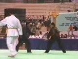 Pencak Silat Martial Arts Indonesia 26