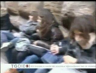 13 09 2010 News Firenze Canale 10
