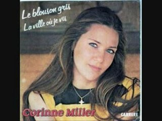 CORRINNE MILLER - LE BLOUSON GRIS