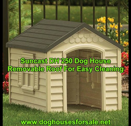 Your Dog Deserves A Suncast Dog House…