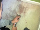 Carpet Cleaners, Upholstery Cleaning | AAA Miracle Carpet Cleaning