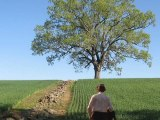 SHAWSHANK REDEMPTION ( filming location video ) Tim Robbins Morgan Freeman