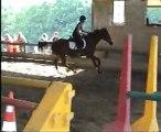Skiper et moi, concours obstacles mai 2007
