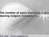 Area Rug Cleaning Calgary: - Rug Cleaning Tips